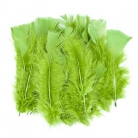 LITTLE FEATHERS TURKEY GREEN 10 GM - Click for more info