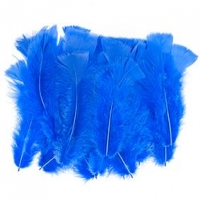 LITTLE FEATHERS TURKEY BLUE 10 GM - Click for more info