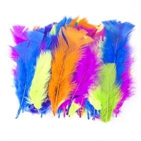 LITTLE FEATHERS TURKEY FLUORO 10 GM - Click for more info