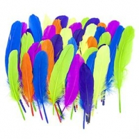 LITTLE FEATHER QUILLS FLUORO 50 PC - Click for more info
