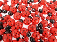 LADY BEETLE EMBELLISHMENTS W/ADH 100 PC* - Click for more info