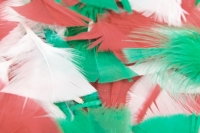 FEATHERS CRAFT XMAS 70 GM - Click for more info