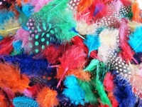 FEATHERS SPOTTED ASSTD 25 GM - Click for more info