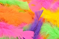 FEATHERS TURKEY FLUORO 250 PC - Click for more info