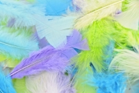 FEATHERS TURKEY PASTEL 250 PC - Click for more info