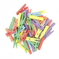LITTLE WOOD PEGS MINI COLOURED 48mm 48 PC : - Click for more info