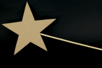 WOODEN WAND LGE STAR 200mm 1 PC # - Click for more info